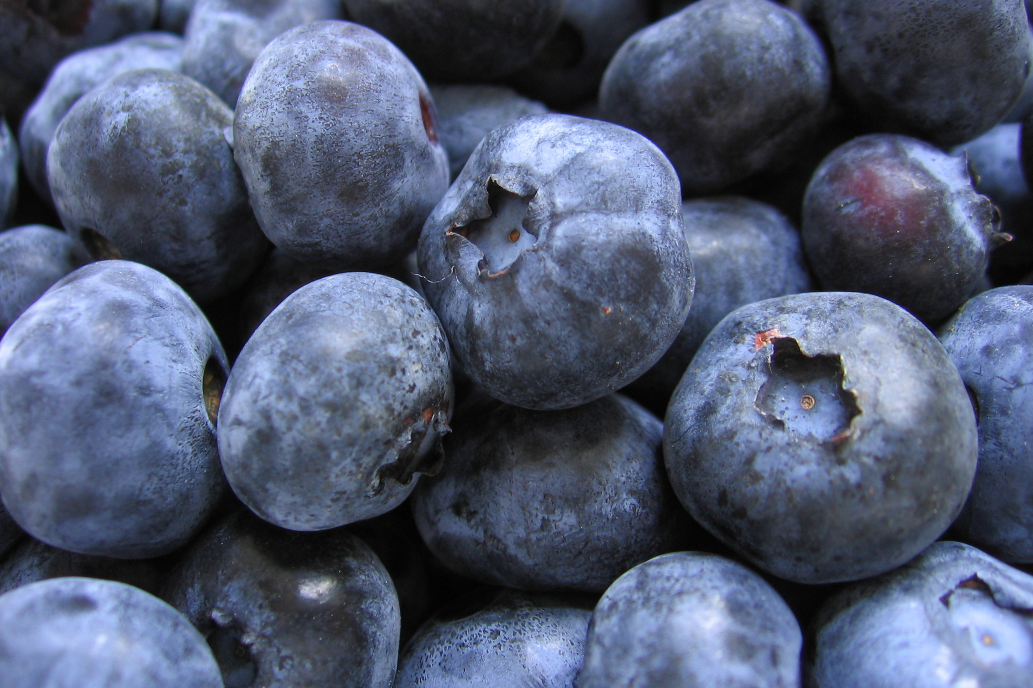 blueberry-health-benefits